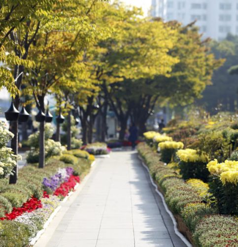 Bucheon: A People-Friendly Vision