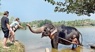 Road to recovery for Lankan tourism seems difficult