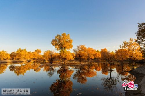 Best places to see autumn leaves in China
