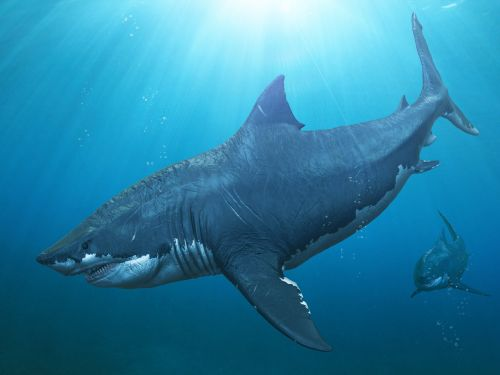 5 of the meanest extinct sea monsters that deserve their own blockbuster