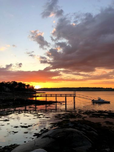 I relocated from central California to a tiny coastal town in Maine. Right now, the extra space and joys of rural living are outweighing the drawbacks