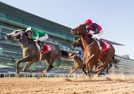 DWC Horserace mrks its 25th anniversary amid the pandemic