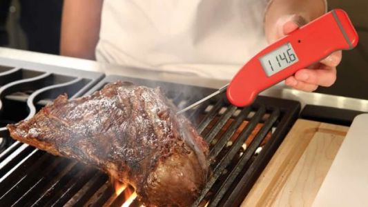 Save $18 on the Granddaddy of All Kitchen Thermometers
