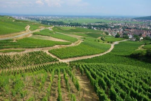 Daily Dose of Europe: Alsace and Colmar-France and Germany Mix It Up