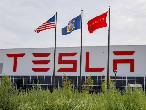 After Elon Musk called stay-at-home orders 'fascist', a worker in a re-opened Tesla factory reportedly tests positive for COVID-19