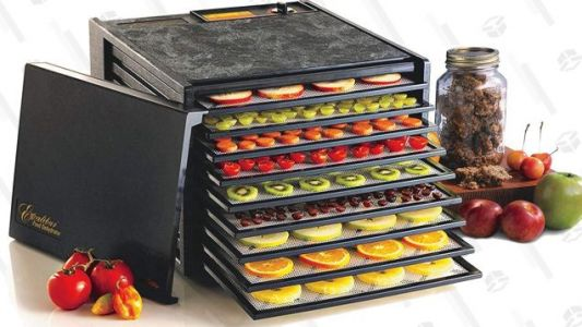 Make Your Own Jerky, Dried Fruit, and More With This Discounted Dehydrator