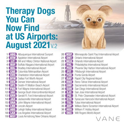 Which U.S. Airports Have Therapy Dogs?