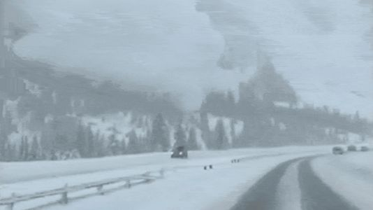 This Is What It Looks Like When an Avalanche Lands on Your Car