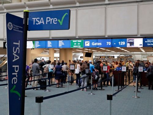20 crazy things people have tried to smuggle past the TSA at airports