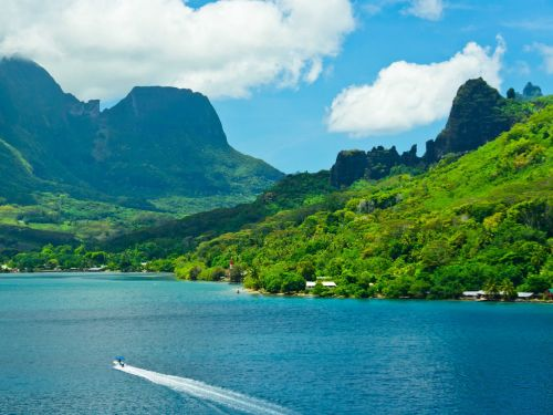 You could win a free vacation to Tahiti if you can prove that you're a stressed out employee