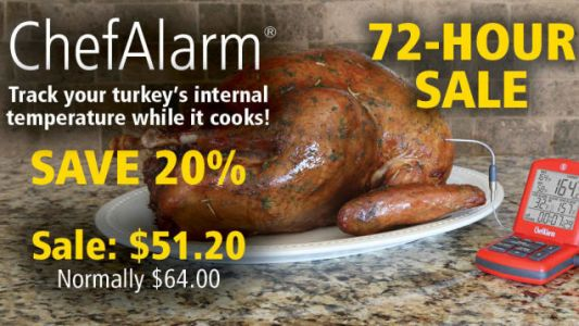 Cook the Perfect Turkey With This $51 ThermoWorks ChefAlarm