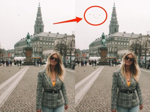 People are now Photoshopping birds into their travel pictures - and it proves you can't believe everything you see on Instagram