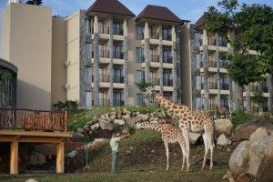 Tourism Minister of Indonesia opens Baobab Safari Resort