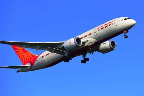 Air India grounded 2 of its planes after passengers complained of being covered in gruesome bedbug bites after flights