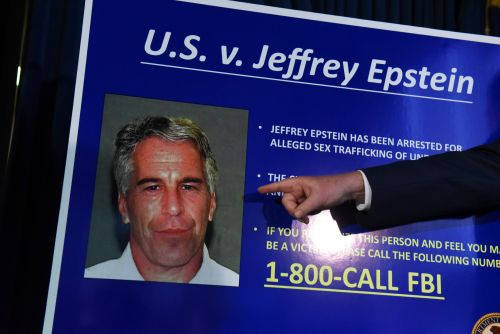 A Manhattan mansion, a ranch in New Mexico, a private jet, and a black stuffed poodle on a Steinway. Here's a look at the assets of Jeffrey Epstein
