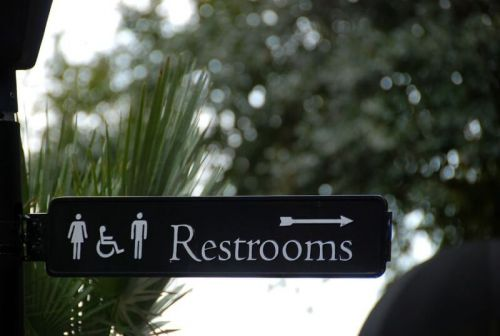 What is it with Bathrooms in the US?