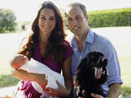 11 royal family pets that lead lives of a luxury