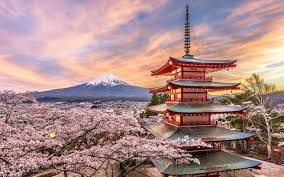 Japan witnesses growth in micro-tourism market