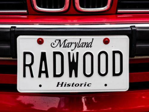 RADWOOD :  THE DETAILS