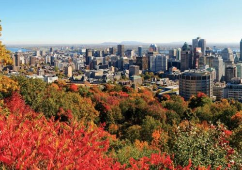 The Ultimate Luxury Guide to Montreal