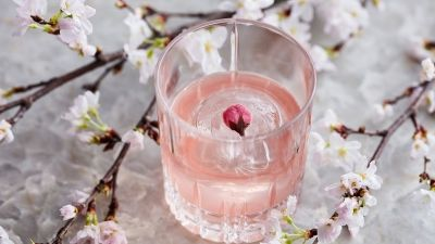 Cherry Blossom Celebrations: Four Seasons Hotel Kyoto Offers Spring Poetry in Artful Edible Form