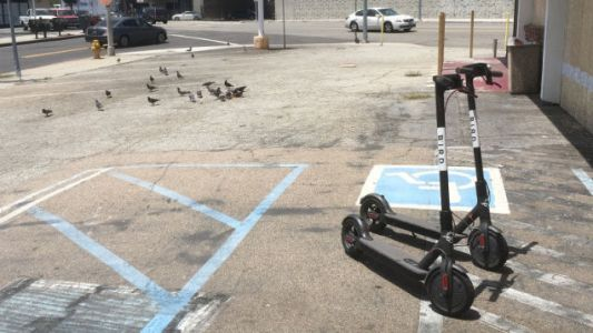 Bird, A Company That Rents Scooters, Is Reportedly Now Valued At $2 Billion