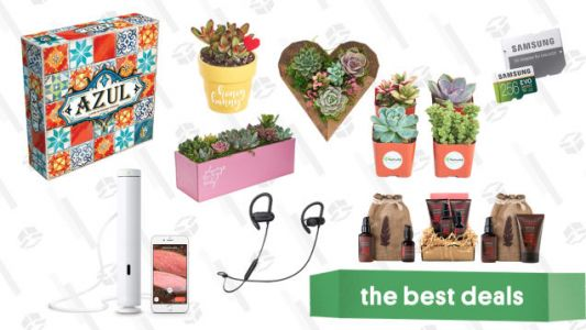 Monday's Best Deals: Succulents, Sous Vide, Samsung MicroSD, and More
