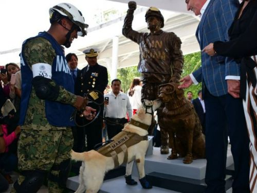 This heroic dog who saved 12 people after an earthquake met her own statue - and the photos are adorable