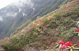 Sikkim builds road to Nepal for tourism