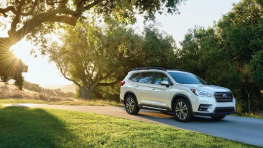 What Do You Want To Know About The 2019 Subaru Ascent And Its 19 Glorious Cupholders?