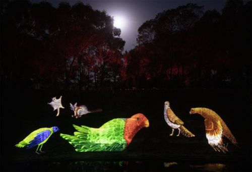 Sovereign Hill Officially Launches New Sound and Light Show