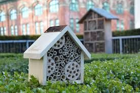 Fairmont Hotels & Resorts build up responsible & Honeybees tourism!