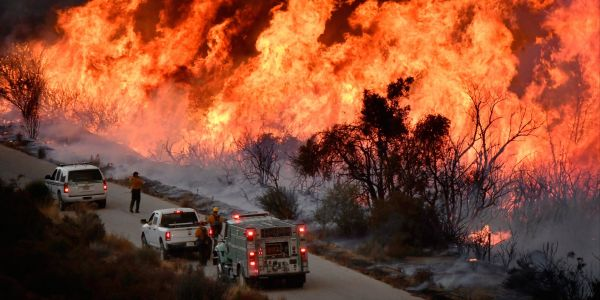 The 12 deadly California wildfires last fall were reportedly caused by downed power lines