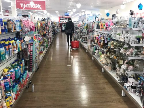 TJ Maxx is proving its the business model of the future as the retail apocalypse hammers the industry