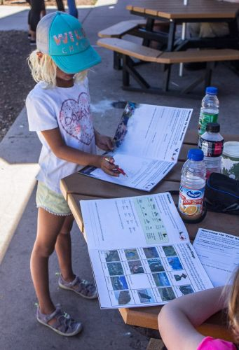 Finding the Best Homeschooling for our Travel Lifestyle