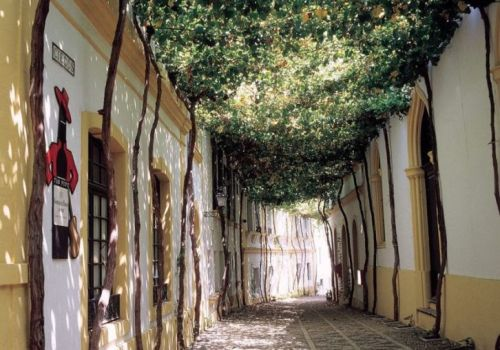 Getting a Taste for Sherry in Jerez