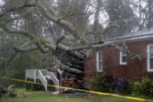 A victim of Hurricane Florence described losing his wife and son at the same time when a tree smashed into their home