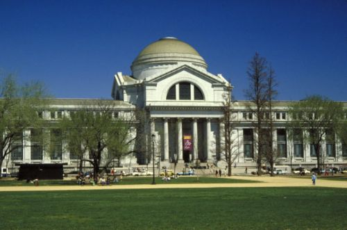 The Best US Museum Exhibits This Summer
