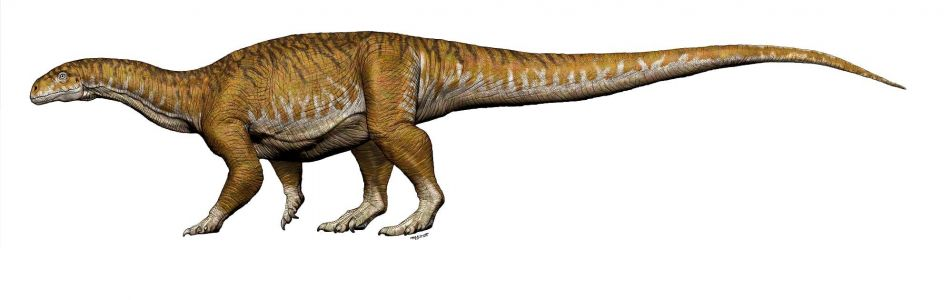 Scientists have discovered a new type of 'giant' dinosaur - and it could explain how they became so huge