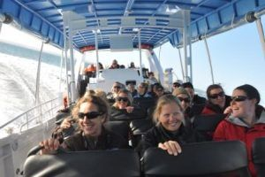 Phillip Island's immersive and empowering wildlife adventure with EcoBoat