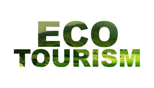 Foreign Minister supports eco-tourism effort for Palau