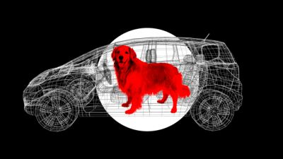 You Aren't Doing Enough To Keep Your Pet Safe In The Car