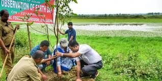 Assam forest & tourism departments embarks on plantation drive in Sivasagar