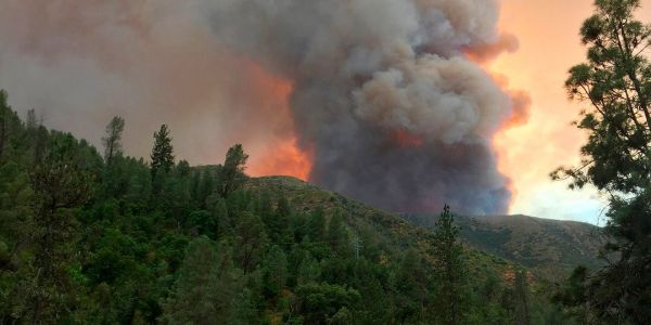 """""""Roads are money, and without the roads open, we die"""": California wildfire closures lead to massive tourism losses for businesses near Yosemite"""
