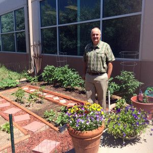 Travel and Transport's Denver Office Creates and Enjoys Community Garden