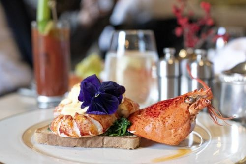 Where to Have Brunch in Washington, DC