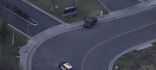 Dog Wins Intense Police Chase