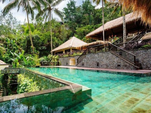 A luxury resort in the middle of the jungle in Bali was voted as having the world's 'most stunning views' and the view from the pool shows why