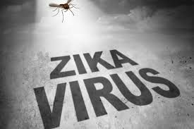 Jaipur on high alert as Zika virus hits Rajasthan capital