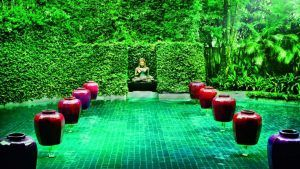 Thailand earns about $12 billion per year from wellness